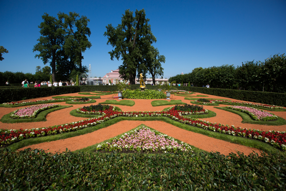 garden @ Peterhof: Nice garden at Petergof, Russia